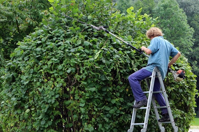 Onderhoud van een grote tuin