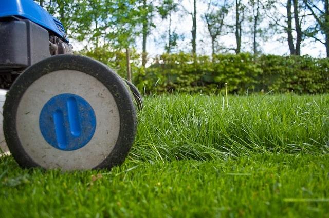 Uw achtertuin ontwerpen: waar moet u rekening mee houden?