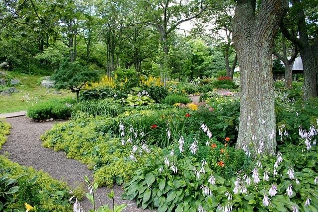 De tuin aanleggen met halfverharding